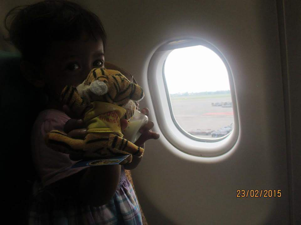Boneka Harimau Garuda Indonesia