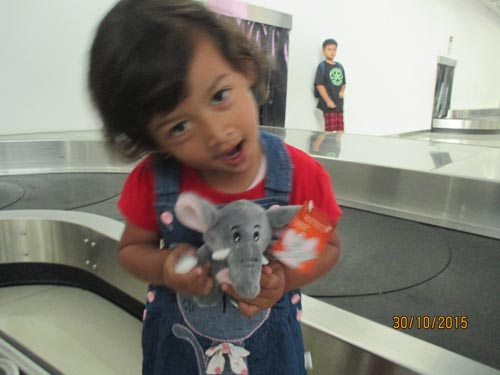 boneka garuda indonesia gajah gama azalea
