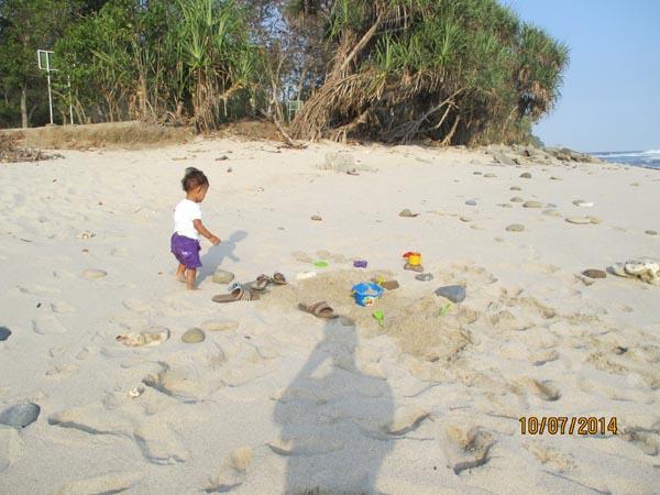 Pasir pantai papuma jember
