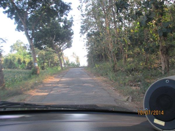 Jalan menuju papuma jember