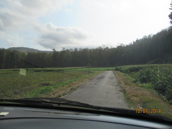 Jalan menuju papuma